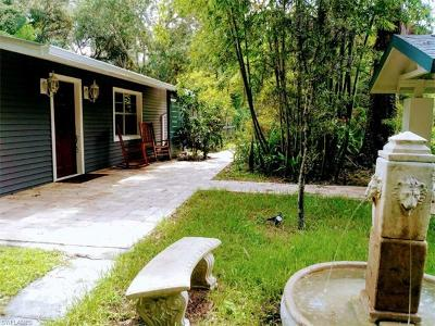 North Fort Myers Single Family Home For Sale: 19240 Ethel Dr
