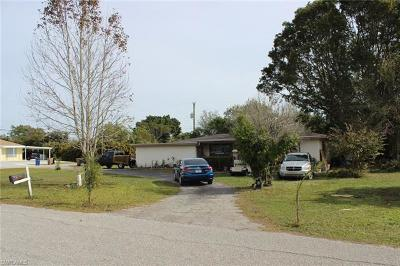 Fort Myers Single Family Home For Sale: 190 Vermont Ave