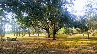 Residential Lots & Land For Sale: 16500 Greenwood Forest Dr