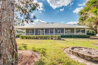 Fort Myers Single Family Home For Sale: 15140 N Mallard Ln
