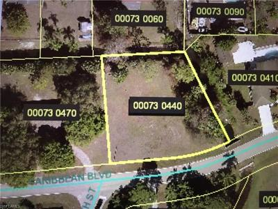 Fort Myers FL Residential Lots & Land For Sale: $22,000