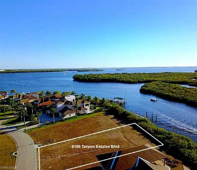 Tarpon Estates, Tarpon Gardens, Tarpon Landings, Tarpon Point Marina Residential Lots & Land For Sale: 6100 Tarpon Estates Blvd
