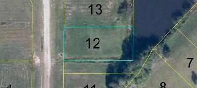 Glades County Residential Lots & Land For Sale: 938 Meyerchick Dr