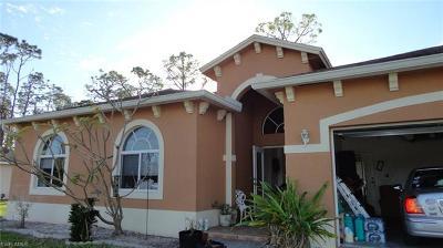 Lehigh Acres Single Family Home For Sale: 178 Thornton Ave S