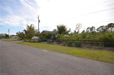 Lehigh Acres Single Family Home For Sale: 1109 Anza Ave