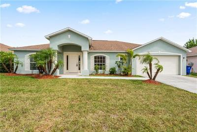 Single Family Home For Sale: 2502 Nature Pointe Loop