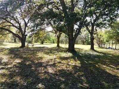 Hendry County Residential Lots & Land For Sale: 130 N Brida St
