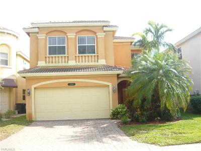 Estero Single Family Home For Sale: 10225 South Silver Palm Dr
