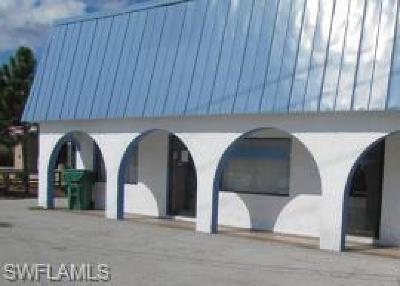 Fort Myers Commercial For Sale: 4845 Palm Beach Blvd