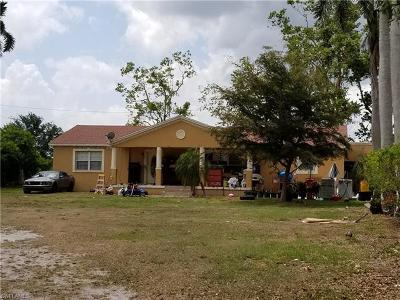 Immokalee Single Family Home Pending With Contingencies: 1475 N 15th St