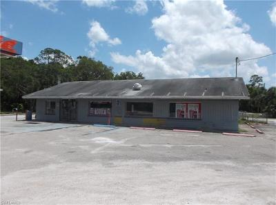 Moore Haven FL Commercial For Sale: $209,900