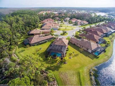 Single Family Home For Sale: 8384 Dario Way