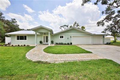 Alva Single Family Home For Sale: 1999 Buford St