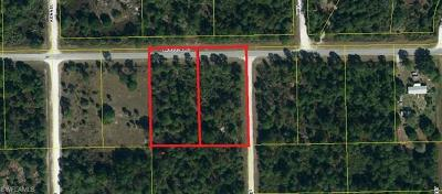 Hendry County Residential Lots & Land For Sale: 612 And 618 Appaloosa Ave