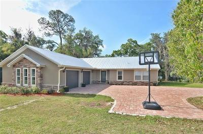Alva FL Single Family Home For Sale: $599,900