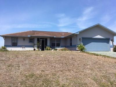 Fort Myers Single Family Home For Sale: 1228 Genoa Ave