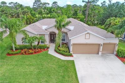 Estero Single Family Home For Sale: 23349 Olde Meadowbrook Cir