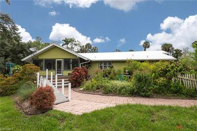 Fort Myers Single Family Home For Sale: 4321 Orange River Loop Rd