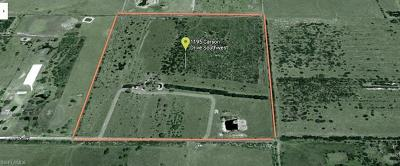 Residential Lots & Land For Sale: 1195 Carson Dr
