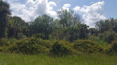 Hendry County Residential Lots & Land For Sale: 865 S Utopia St