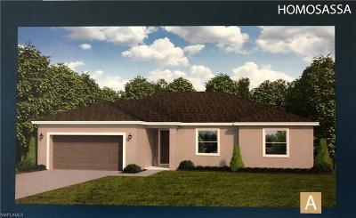 Cape Coral Single Family Home For Sale: 3434 NE 8th Pl
