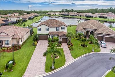 Fort Myers Single Family Home For Sale: 9119 Sandhill Crane Ct