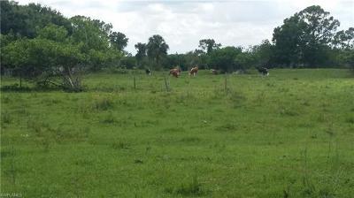 Montura, Montura Ranch, Montura Ranch Estates, Montura Ranch Sec 15, Montura Ranch Sec 34 Residential Lots & Land For Sale: 670 N Arboleda St