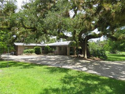 Labelle FL Single Family Home For Sale: $235,000