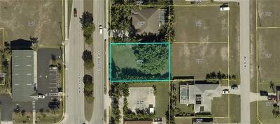 Cape Coral Residential Lots & Land For Sale: 3915 Chiquita Blvd S