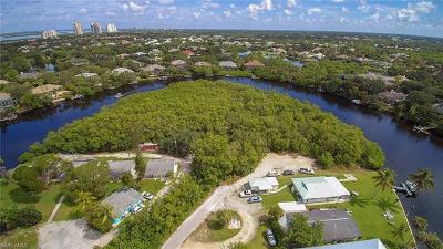 Bonita Springs Residential Lots & Land For Sale: 27502 Big Bend Rd