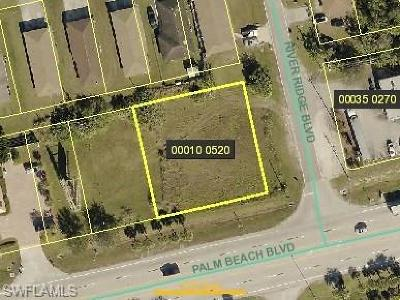 Commercial Lots & Land For Sale: 12950 Palm Beach Blvd