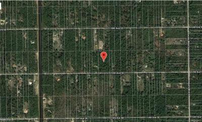 Collier County Residential Lots & Land For Sale: 4165 12th Ave SE