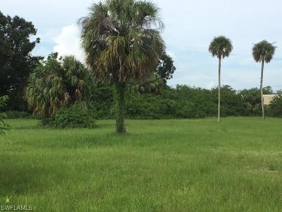 Commercial Lots & Land For Sale: Forestry Division Rd