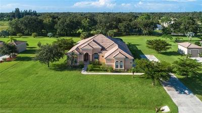Fort Myers Single Family Home For Sale: 13920 Binghampton Dr