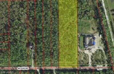 Naples Residential Lots & Land For Sale: 4745 4th Ave NE