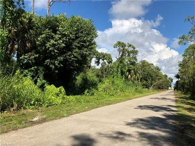 Naples Residential Lots & Land For Sale: 0009 Pine Tree Dr