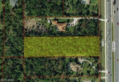 Naples Residential Lots & Land For Sale: 13565 Collier Blvd