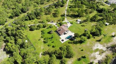 Cape Coral Single Family Home For Sale: 12751 Palmetto Pines Dr