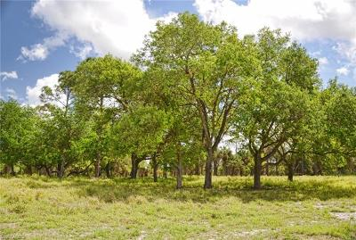Residential Lots & Land For Sale: 811 Rialto Pointe Dr
