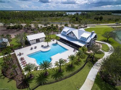Babcock Ranch Single Family Home For Sale: 42186 Hammock Ln