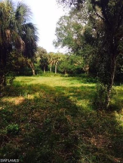 Alva Residential Lots & Land For Sale: 18821 & 18851 Palm Beach Blvd