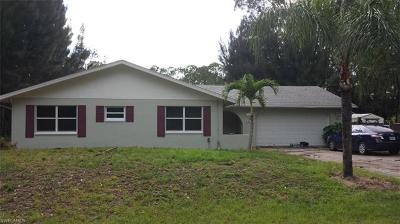 North Fort Myers Single Family Home For Sale: 20503 Fern Cir