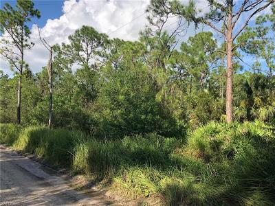 Glades County Residential Lots & Land For Sale: 1128 Wright St