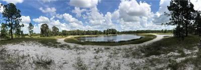 Lehigh Acres Residential Lots & Land For Sale: 417 Harshaw St