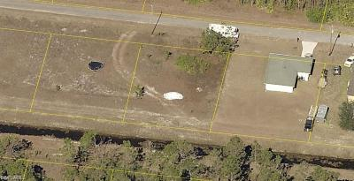 Lehigh Acres Residential Lots & Land For Sale: 1252 Edna St E