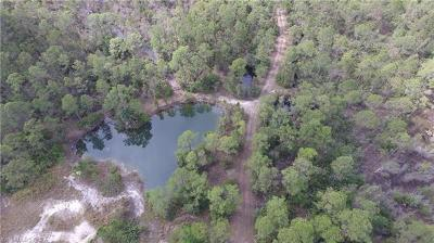 Collier County, Lee County, Hendry County, Charlotte County, Desoto County, Glades County, Sarasota County, Manatee County Residential Lots & Land For Sale: 20800 Williams Dr