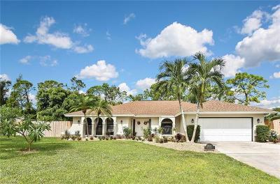 Fort Myers Single Family Home For Sale: 18141 Riccardo Ct