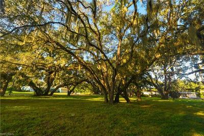 Fort Myers Residential Lots & Land For Sale: 1303 Shadow Ln