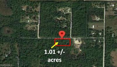 Residential Lots & Land For Sale: Wright Ave