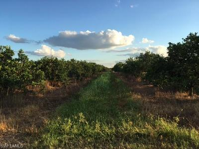 Residential Lots & Land For Sale: 5500 1st Rd